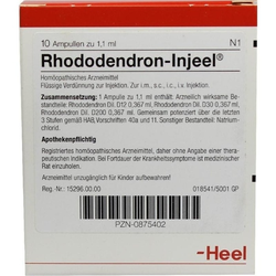 RHODODENDRON INJ