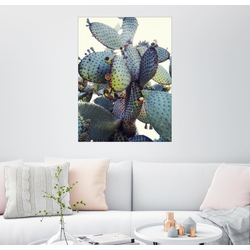 Posterlounge Wandbild, Stachelige Umarmung 100 cm x 130 cm