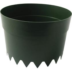 Bewässerungsring Aquaring, 20 cm, grün - 10er Set