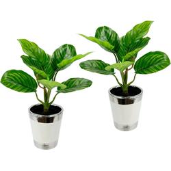 Kunstpflanze Maranthuspflanze im Topf Maranthuspflanze, I.GE.A., Höhe 36 cm