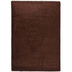 Teppich Shaggy Basic 170 (Braun; 120 x 170 cm)