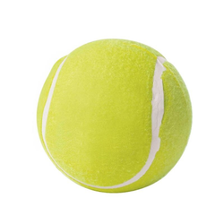Hunter Hundespielzeug Tennisball Big 13 cm