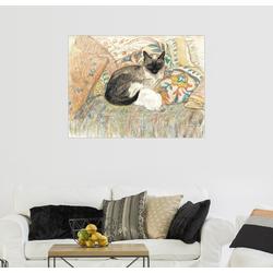 Posterlounge Wandbild, Siamkatze mit ihrem Kätzchen 70 cm x 50 cm