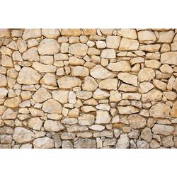 Vliestapete »Mauer 01«, Tapeten, 83488328-0 braun Maße (B/H): (384/260 cm) braun