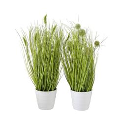 Kunstpflanze 2er-Set Kunstpflanze im Topf, BOLTZE