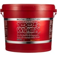 Scitec Nutrition 100% Whey Protein Professional Banane Pulver 5000 g