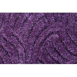 ANDIAMO Teppichboden Amberg, Hoch-Tief Teppichboden, Breite 300 cm lila