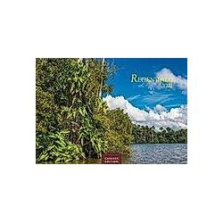 Regenwald 2021 S - Kalender