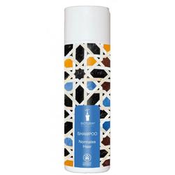 Shampoo Normales Haar Nr.100 200 ml