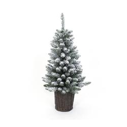 Weihnachtsbaum Kiefer Frost 90 cm