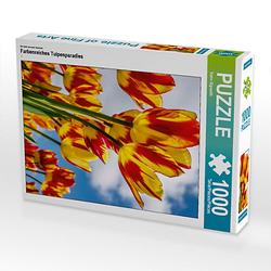 Farbenreiches Tulpenparadies Lege-Größe 48 x 64 cm Foto-Puzzle Bild von Karin Sigwarth Puzzle