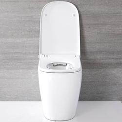 Hirayu - Japanisches Stand-Dusch-WC