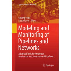 Modeling and Monitoring of Pipelines and Networks als Buch von