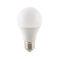 Leuchtmittel Ecolux E27 LED 9,5W 2700K