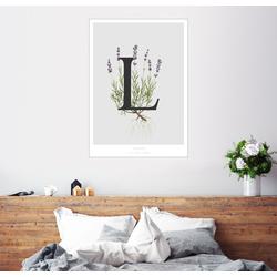 Posterlounge Wandbild, L steht für Lavender (Lavendel) 70 cm x 90 cm