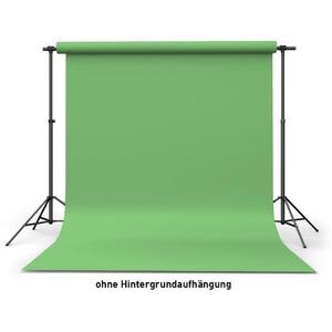 Calumet Hintergrundkarton Summer Green (2,72 x 11 m Rolle)