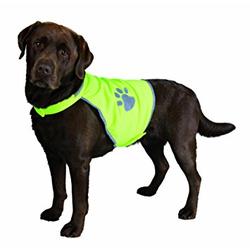 Hunde-Sicherheitsweste