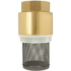 Rückschlagventil für pumpe 1/2 3/4 1 1-1/4 1-1/2 2 2-1/2 3 zoll - fußventil mit saugkorb rückschlagventil mit filter für Saugschlauch schwengelpumpe gartenpumpe (1-1/2 zoll)