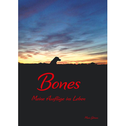 Bones als Buch von Marc Götzen