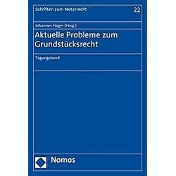 Aktuelle Probleme zum Grundstücksrecht - Buch