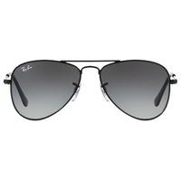 RJ9506S 220/11 shiny black / grey