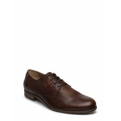 SNEAKY STEVE Dirty Low Shoes Business Laced Shoes Braun SNEAKY STEVE Braun 42,43,44,45