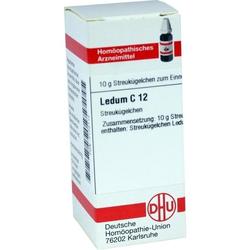 LEDUM C12
