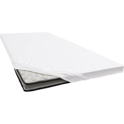 Spannbettlaken Renforcé, damai, für Topper weiß 100 cm x 200 cm
