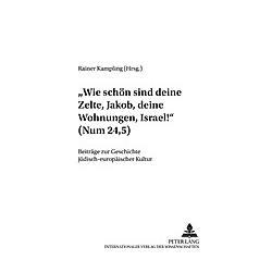 'Wie schön sind deine Zelte  Jakob  deine Wohnungen  Israel!' (Num 24 5) - Buch