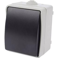 EWSW2P Aufputz-Schalter