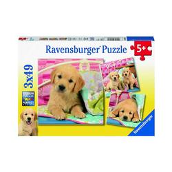 Ravensburger Puzzle Kuschelige Hündchen, 3er Set Puzzle, je 49 Teile, Puzzleteile