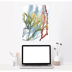 Posterlounge Wandbild, Seepflanzen II 100 cm x 130 cm