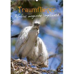 Traumflieger - Afrikas magische Vogelwelt (Wandkalender 2021 DIN A2 hoch)