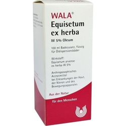 EQUISETUM EX Herba W 5% Oleum 100 ml