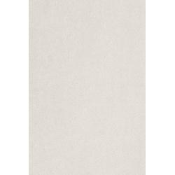 Teppich Proteus, aus Econyl® Garn, Meterware in 400 cm Breite weiß 400 cm