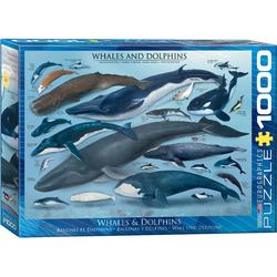 empireposter Puzzle Wunder des Meeres - Wale und Delphine - 1000 Teile Puzzle im Format 68x48 cm, Puzzleteile