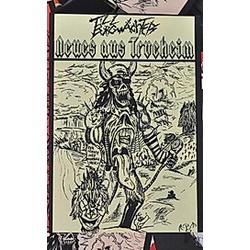 Neues aus Trueheim. Till Burgwächter  - Buch