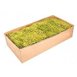 Moos Platten natur 2 kg