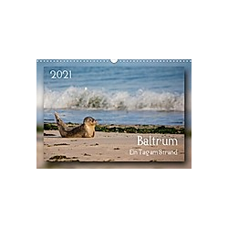 Baltrum - Ein Tag am Strand (Wandkalender 2021 DIN A3 quer)