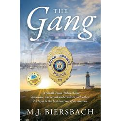 The Gang als Taschenbuch von M J Biersbach