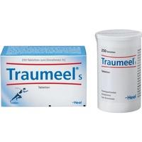 Heel Traumeel S Tabletten 250 St.