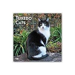 Tuxedo Cats - Tuxedo-Katzen 2021 - 16-Monatskalender