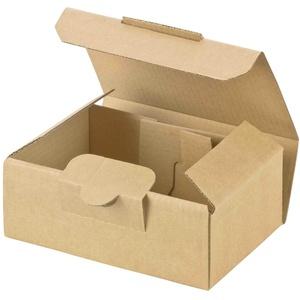 Maxibriefkarton und Warensendung Versandkarton SMALL, 120x80x45mm, braun