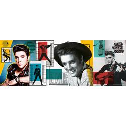 Trefl Puzzle Panorama Puzzle 500 Teile - Elvis Presley, Puzzleteile