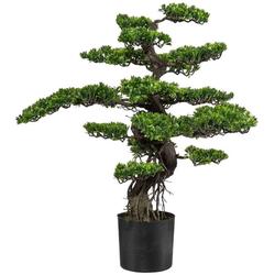 Kunstbonsai Bonsai Bonsai, Creativ green, Höhe 90 cm