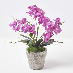 Homescapes mittelgroße Kunstorchidee im Topf, hochwertige künstliche Orchidee mit lila Blüten, Deko-Orchidee Phalaenopsis im hellgrauen Topf, dekorative Kunstblume, 42 cm hoch