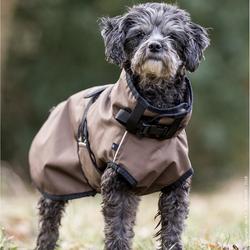 fit4dogs Active Cape MINI Hundemantel, Rückenlänge 40 cm, braun