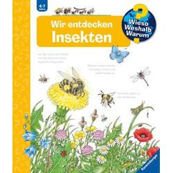 WWW39 Wir entdecken Insekten
