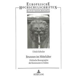 Brunnen im Mittelalter als Buch von Ulrich Schulze
