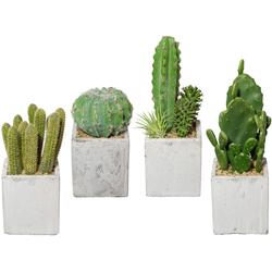 Kunstkaktus Kaktus, Creativ green, Höhe 22 cm, 4er Set, im Zementtopf